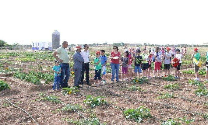Miguelturra celebra el Día del Medio Ambiente en los huertos ecológicos