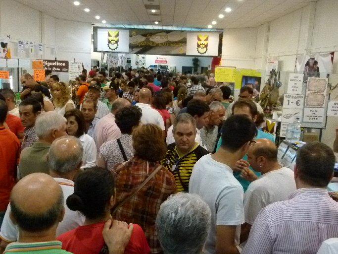 Manzanares FERCAM llega a su fin este domingo