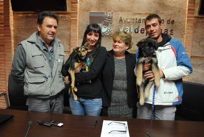 Valdepeñas El Centro Municipal Canino anima a la adopción en Navidad