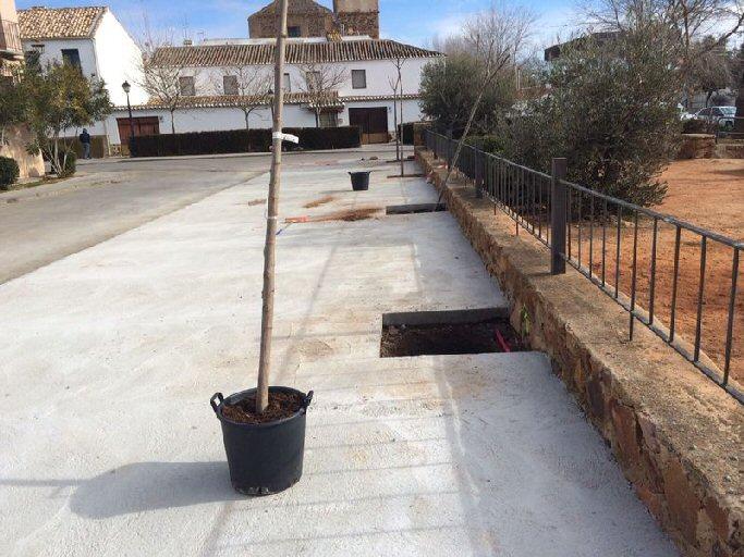 Almagro La Concejalía de Medio Ambiente planta acacias en dos puntos de la ciudad