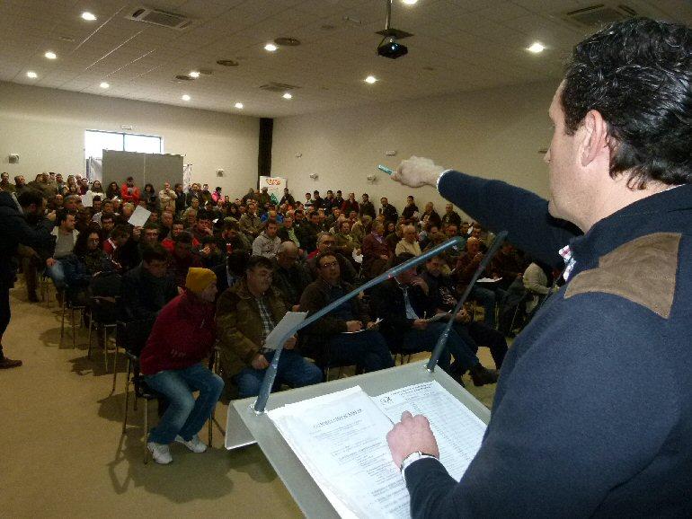 Manzanares Rotundo éxito de la 90ª Subasta de Sementales de Raza Ovina Manchega
