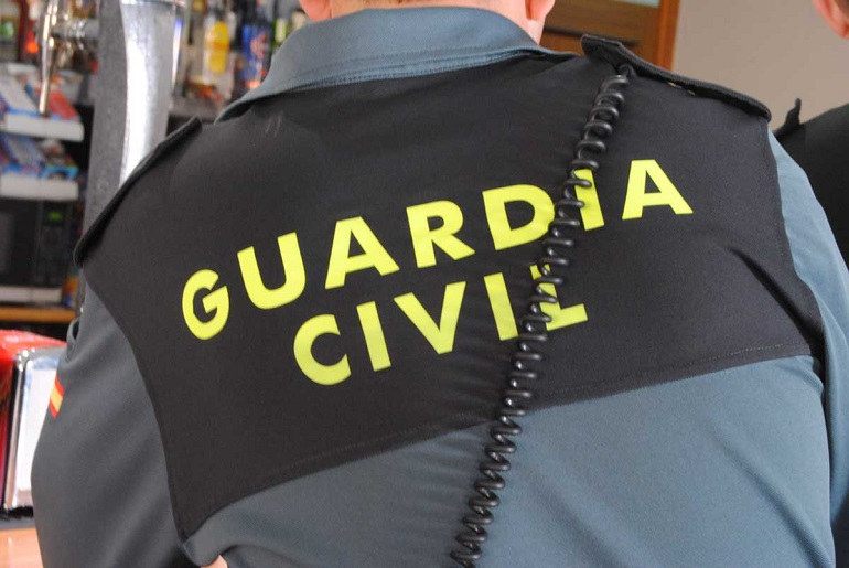 Miguelturra La Guardia Civil investiga a un vecino por el abandono de 31 perros en un vehículo, de los que 23 resultaron fallecidos